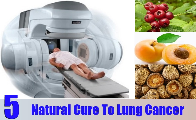 5 Natural Cure For Lung Cancer How To Cures Lung Cancer